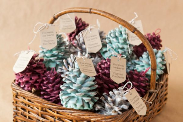 somethingturquoise-diy-pinecone-fire-starter-favors_0001