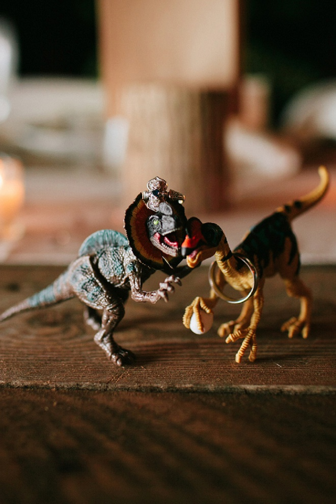 How fun is this wedding ring shot with dinosaurs? Love!