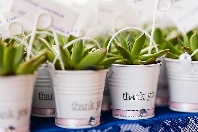 We're in love with these handmade succulent wedding thank you favors!