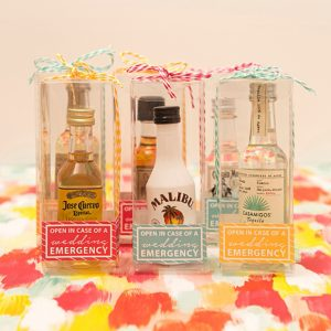 st-diy-in-case-of-emergency-mini-alcohol-favors_featured