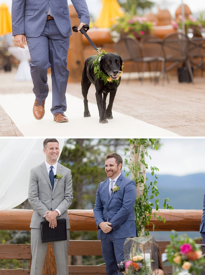 How cute is this couple's ring bearer pup with green collar garland?! Love it!