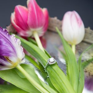 Having tulips in your wedding, if yes then you must read these tips!