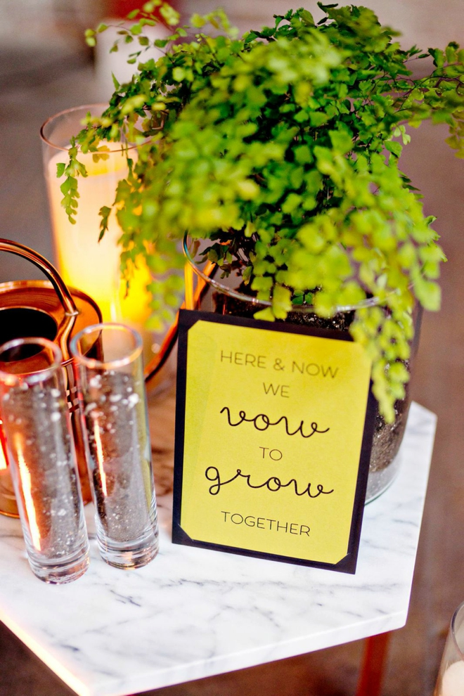 Check Out This Diy Tree Planting Unity Ceremony